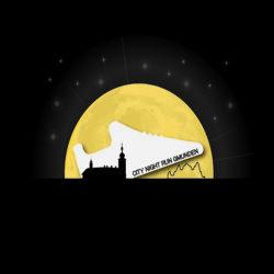 CITY NIGHTRUN GMUNDEN